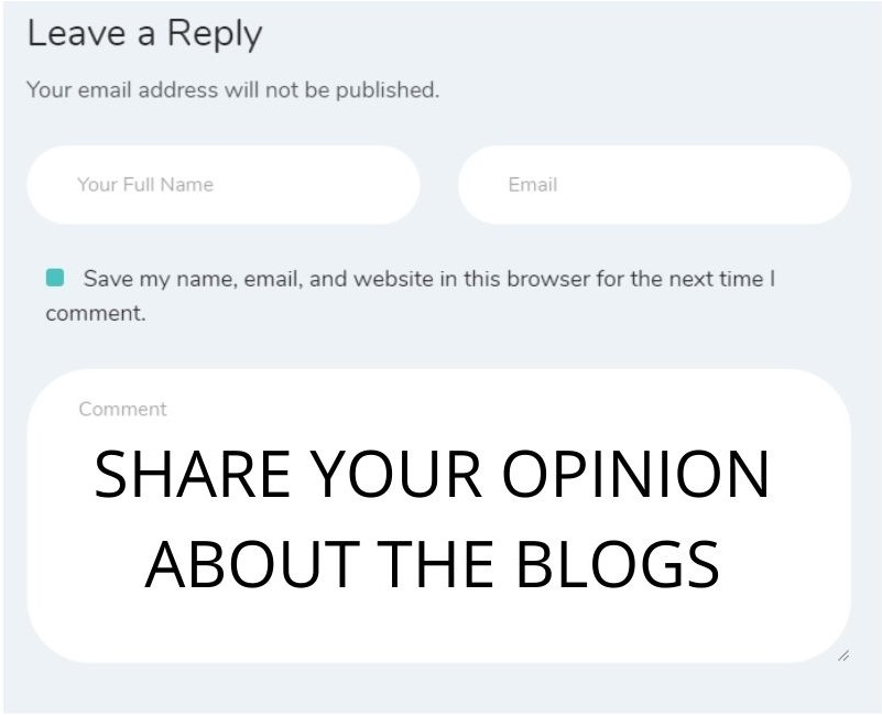 comment section for SEO blogs
